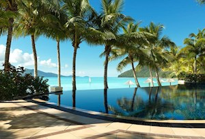 Beach Club infinity edge pool overlooking Catseye Beach, Queensland