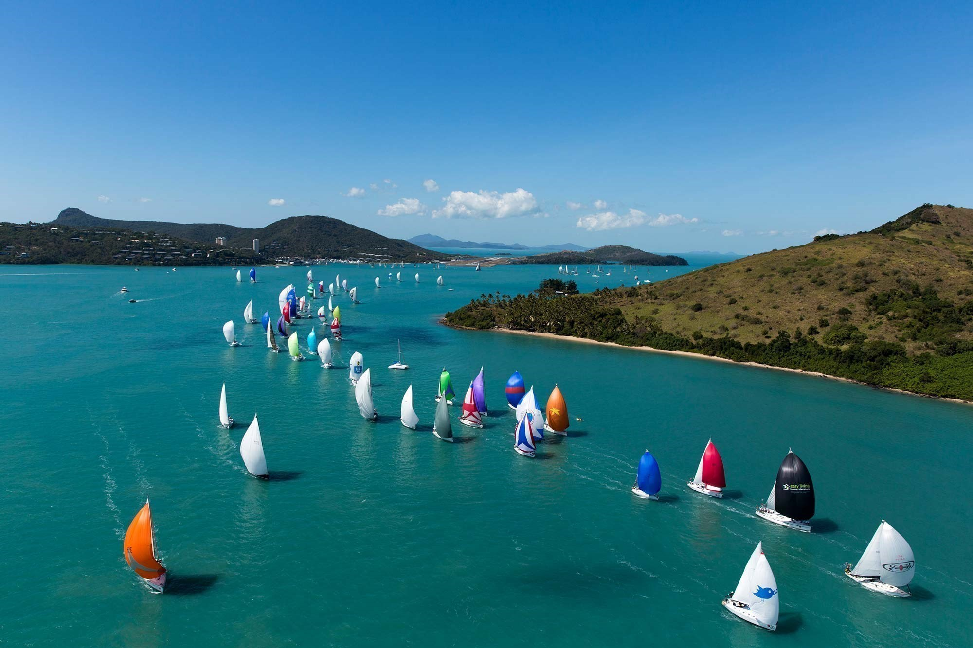 Sail racing island jacket